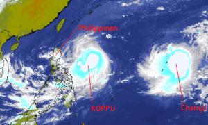 taifun_koppu