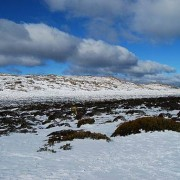 512px-Ben_Lomond_snow_fields