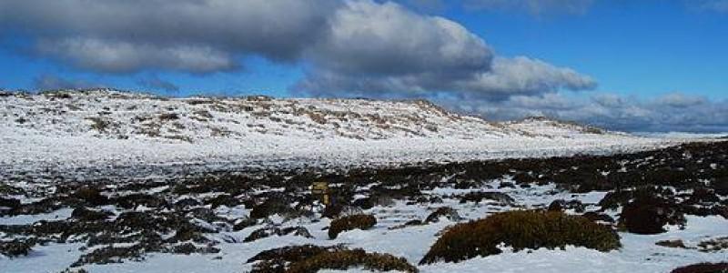 512px-Ben_Lomond_snow_fields