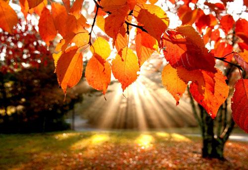 Zum Wochenbeginn Weiter Viel Sonne Und Ungewohnliche Warme Ortlich