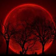 lunar_eclipsetle27015