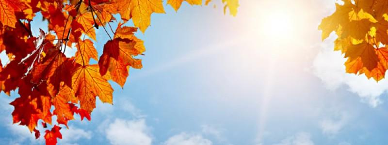 Was kann man vom September alles erwarten? – Wetterkanal vom  Kachelmannwetter-Team