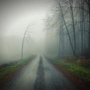 Nebel18