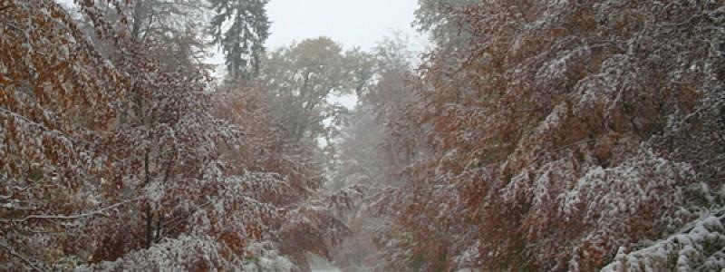 erste-schnee