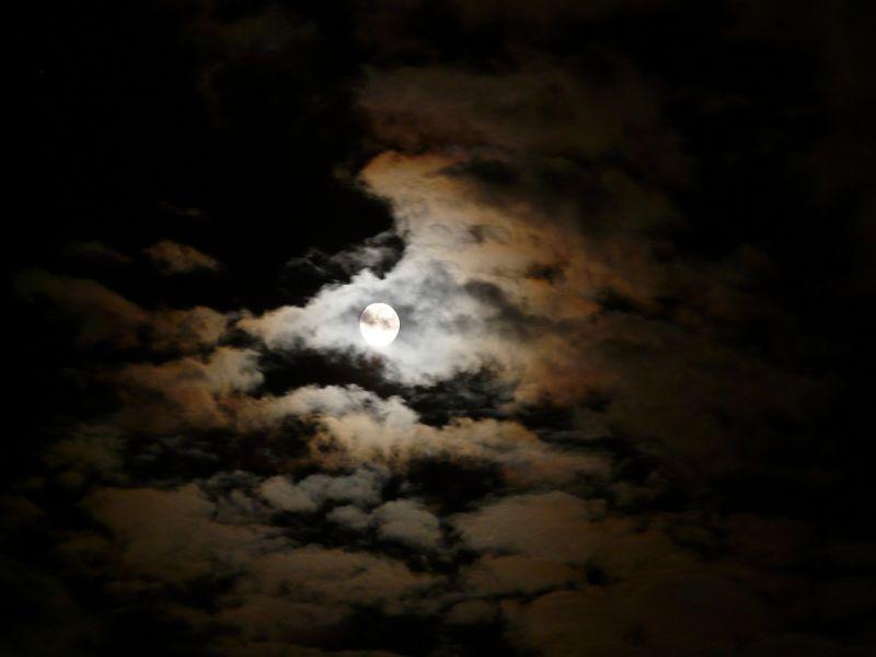 night-60454_1920