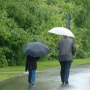 rainy-weather-123214_1280