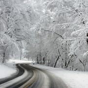 winter-581101_19201