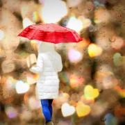 rain-756647_1280