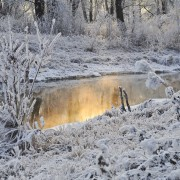 snow-21979_1280