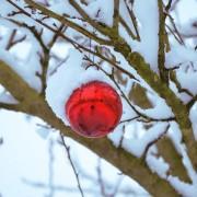 snow-936792_640
