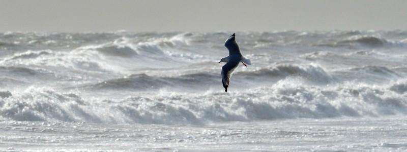 Windiges Wochenende Im Norden Vor Allem An Der Nordsee St Rmisch Wetterkanal Vom