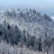 snow-1060595_1280