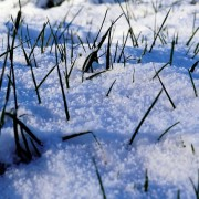 winter-1145036_1280