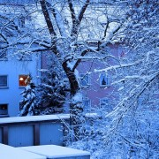 winter-346302_640