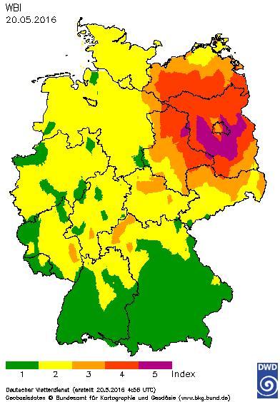 160520waldbrand