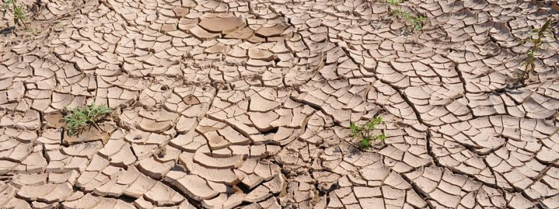 drought-19478_960_720