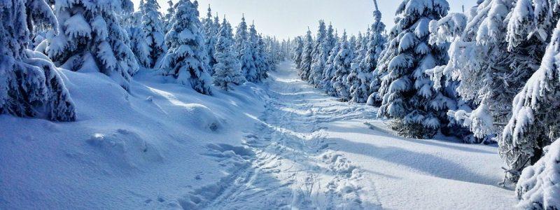 Weiße Weihnachten.Weiße Weihnachten Ab Wann Vorhersagbar Wetterkanal Vom