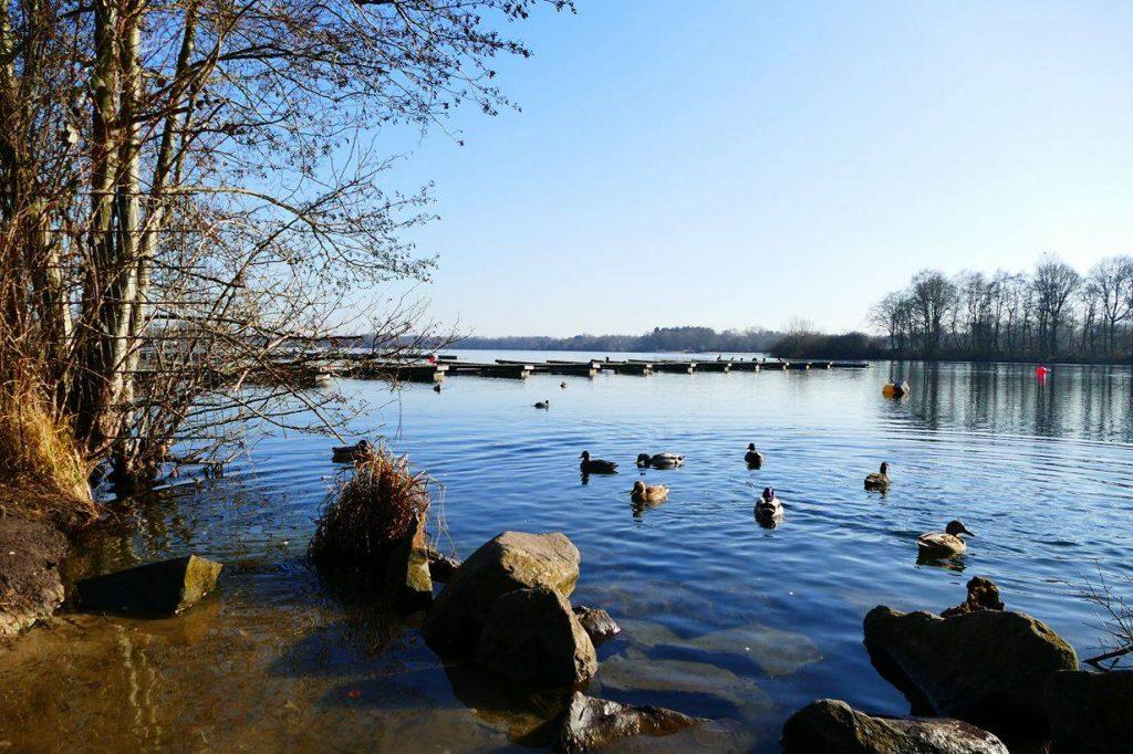 170215unterbachersee