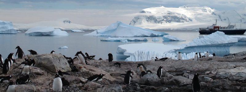 antarctica-940554_960_720