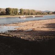 rhein2003