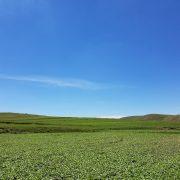 blue-sky-2353047_1920