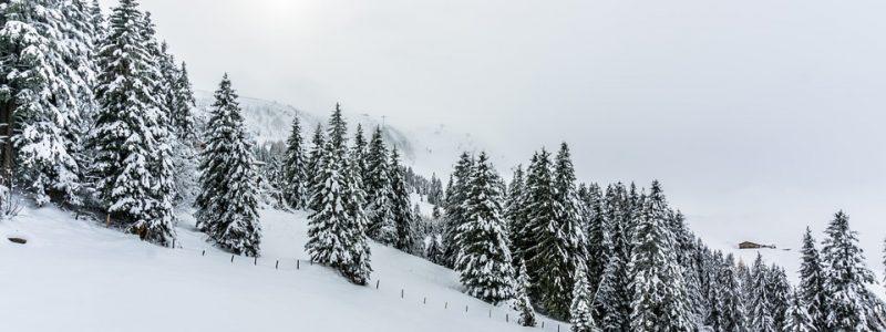 winter-2949606_960_720