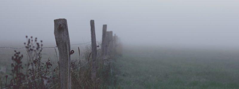 fog-1494431_1920