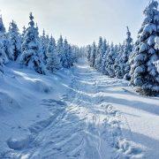 winter-1384661_960_720
