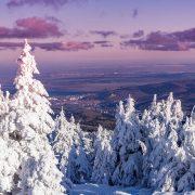 winter-2637142_960_720
