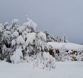 winter-2007730_960_720