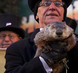 Groundhog_Day_Punxsutawney_2013-2-800x300