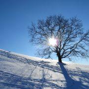 winter-1147277_1920