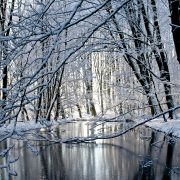 winter-3221969_1920
